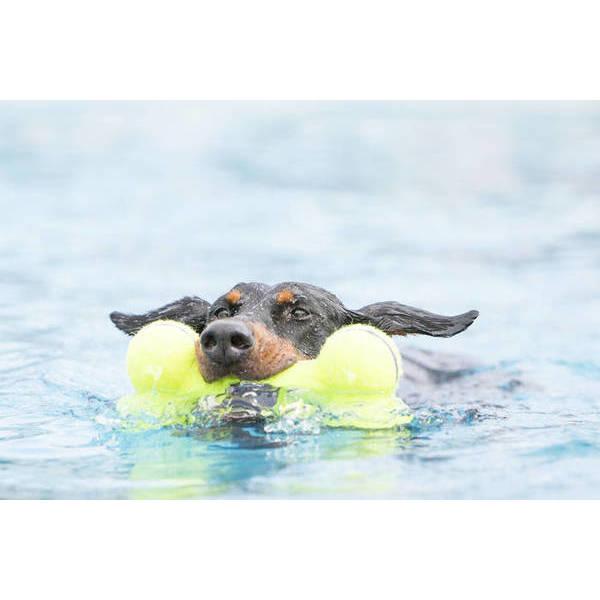 KONG AIR SQUEAKER BONE Large - rotaļlieta kauliņs lieliem suņiem